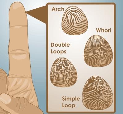 classifying-fingerprints