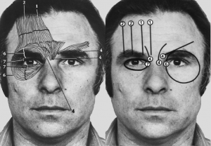 Il FACS (Facial Action Coding System)
